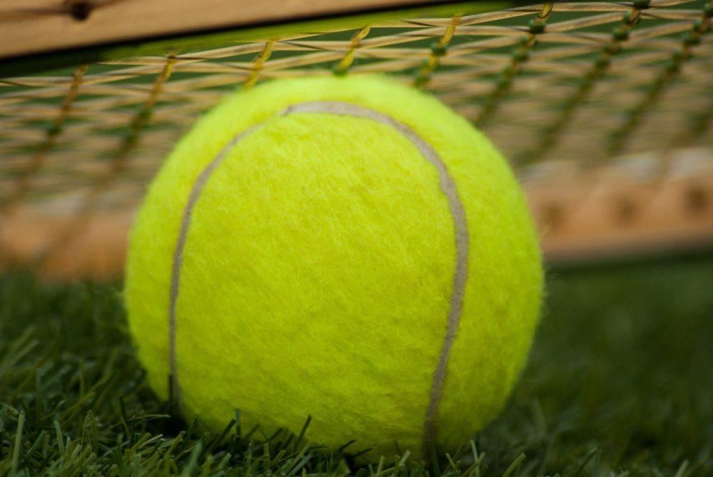 Tenis ziemny / wynajem kortu