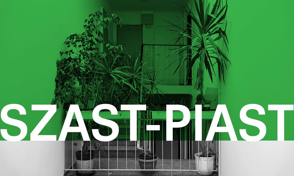 SZAST-PIAST – Warsztaty z tworzenia wiszących ogrodów w technice Kokedama